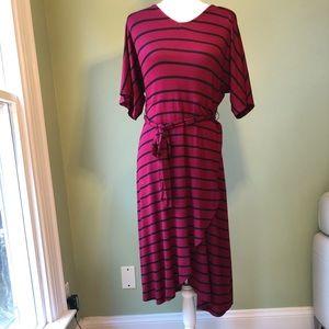NWT! Agnes & Dora Magenta & Navy Striped Dress